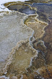 Detail of geothermal features in Mammoth Hot Springs Stock Photos