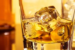 Detail of glass of whiskey with ices near bottle on table with reflection, warm atmosphere Royalty Free Stock Photo