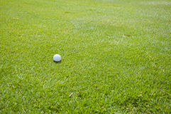 Detail of golf ball on grass Royalty Free Stock Image