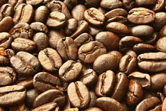 Detail of the grains of coffee. Detail photos of roasted arabica coffee royalty free stock image