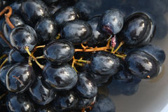 The detail of grapes Stock Photo