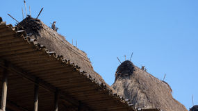 Detail of grass rooftops at Bena a traditional village with grass huts of Ngada people in Flores. Royalty Free Stock Photography
