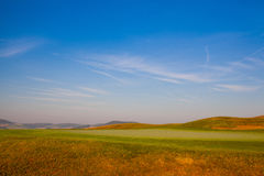 The detail of green field at sunrise Stock Images