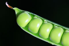 Detail of the green Peas Stock Photo