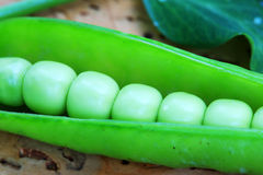 Detail of the green Peas Royalty Free Stock Images