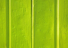 Detail of green wall Royalty Free Stock Images