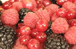 Detail of a group of red berries. And fruits stock image