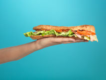 Detail hand holding a big sadwich Stock Photography