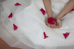 Detail of the hands of a communion girl. Dressed in white with a flower in her hands Stock Photo