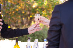 Detail of hands serving  wine Royalty Free Stock Image