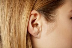 Detail of the head with female human ear and hair close up. Detail of the head with female human ear royalty free stock image