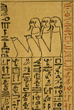 Detail of hieroglyphic text on papyrus Royalty Free Stock Photo