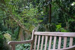 Detail of the highgate cemetery, London stock photos