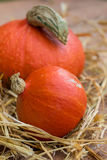 Detail of hokkaido pumpkins Royalty Free Stock Image