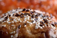 Detail home-made bread with sesame seed Royalty Free Stock Photo