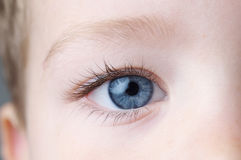 Detail of human eye Royalty Free Stock Photography