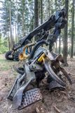 Harvester in the wood and in the summer sun royalty free stock images