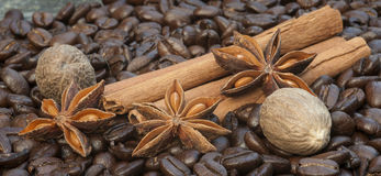 Detail image of coffee beans, cinnamon sticks, sar anise and nut Royalty Free Stock Images