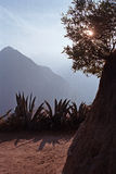 Detail of the Inca Trail to Machu Picchu in Peru, South America. Countryside in the Sacred Valley outside of the city of Cusco, Peru Stock Photos