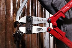 Detail of 30 inch bolt cutters cutting lock of basement private property. Two teenage burglars breaking in basement cellar with 30 inch bolt cutters Royalty Free Stock Image