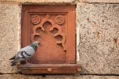 Detail of Isa Khan Niyazi tomb decoration with a sitting pigeon, Stock Photo