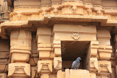 Detail of Jain temple facade, Jaisalmer, India Stock Photography