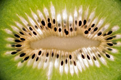 Detail of a kiwi Royalty Free Stock Photography