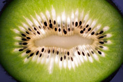 Detail of a kiwi Stock Photography