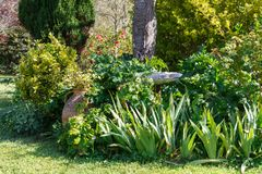 Detail of a landscaped garden Stock Image