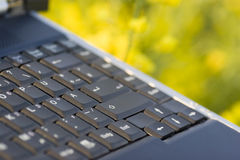 Detail of a laptop royalty free stock photo