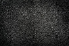 Detail of Leather Grain Texture Stock Image