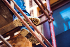 Detail of legs of unrecognizable man standing on scaffold Stock Photography
