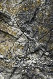 Detail of the limestone rock Royalty Free Stock Image