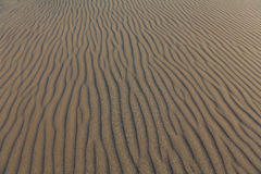 Detail of lines in sand dune Royalty Free Stock Photos