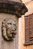 Detail of lion head fountain in Cannobio Stock Photos