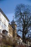 Detail of Ljubljana Royalty Free Stock Images
