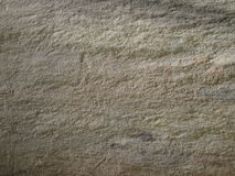 Detail look at Calcareous siltstone stone. From Czech Republic stock photos