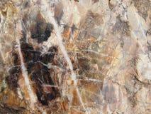 Detail look at Chert stone. From Czech Republic stock photos