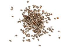 Detail macro closeup photo of spilled chia seeds Salvia hispani royalty free stock photos
