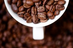 Detail, macro view of coffee mug with aromatic black coffee bean Stock Photography
