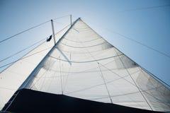 Detail of main sail of sailing yacht Stock Photography