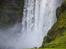 Detail of majestic waterfalls with rocks and grass Royalty Free Stock Image