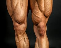 Detail of male bodybuilder front leg muscles on black background. Quadriceps and tibialis anterior Stock Photos