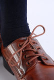 Detail of a male shoe. Close-up of a brown polished male shoe. White background Stock Photography