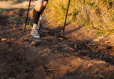 Detail of a man practicing trail running Royalty Free Stock Image