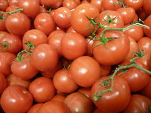 Detail of many fresh red round tomatoes Royalty Free Stock Photos
