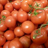 Detail of many fresh red round tomatoes Royalty Free Stock Image