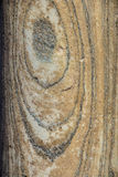 Detail marble column Royalty Free Stock Photos
