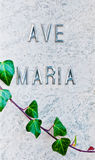 Detail of marble headstone and ivy Stock Photo