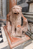 Detail of marble lion in Bergamo Royalty Free Stock Images